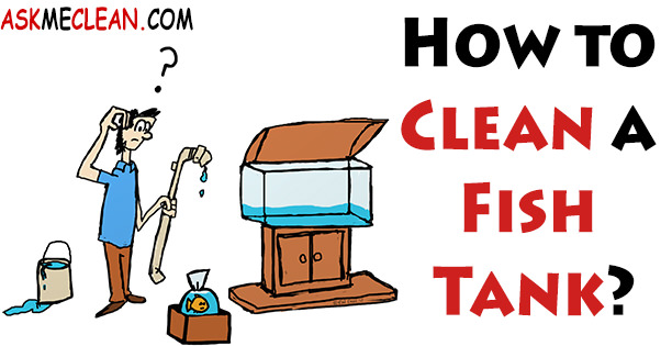how to properly clean a fish tank